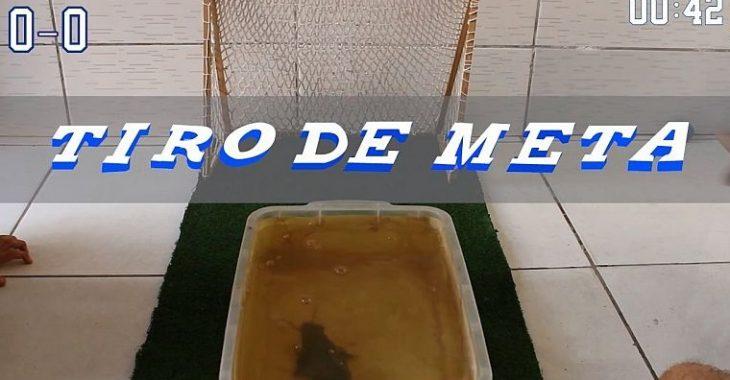 "E se os peixes artilheiros jogassem ""Futbol Brasileño 96""?"