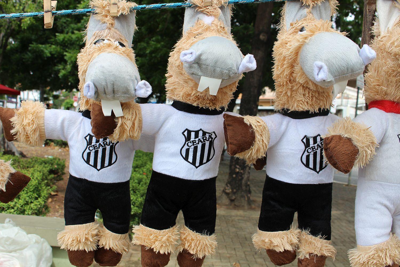 Olha o Cavalinho do Ceará em mais detalhes (Foto: Rafael Luis Azevedo/Verminosos por Futebol)