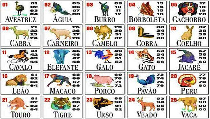No Jogo do Bicho,séries de quatro números representam 25 animais (Foto: Reprodução)